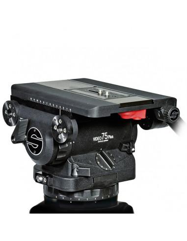 Sachtler głowica Video 75 Plus EFP udźwig 12-85 kg
